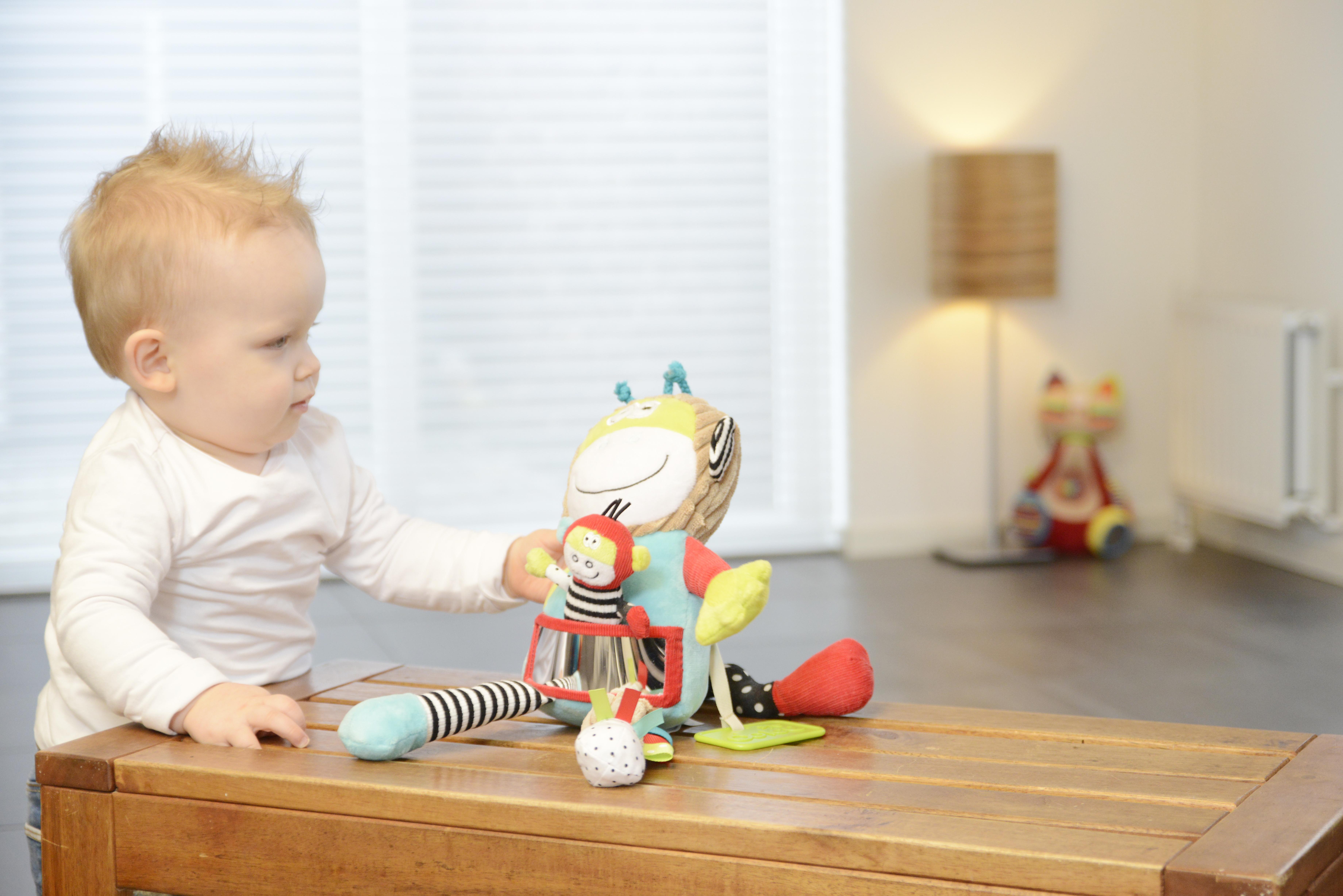 Maimuță cu pui, jucărie senzorială 2